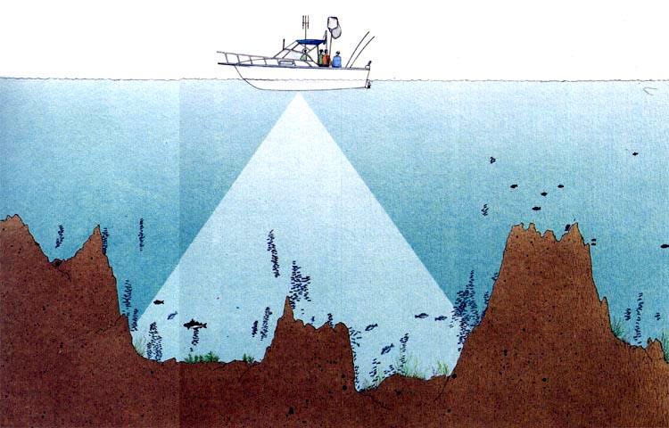 ультразвук для ловли рыбы