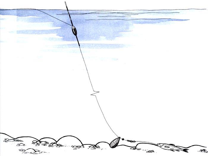 как поймать судака на фидер